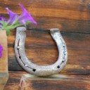 horseshoe-590480_640