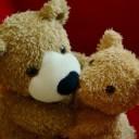 teddy-1113207_640